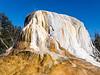 Orange Mound Spring, Mammoth Hot Springs