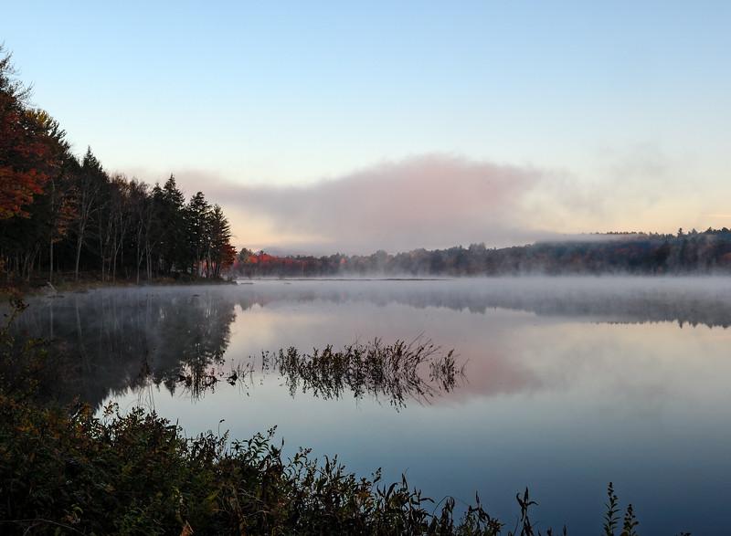 Foggy pre-dawn