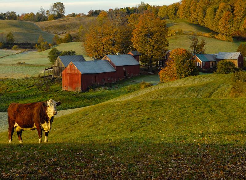 Jenne Farm in autumn