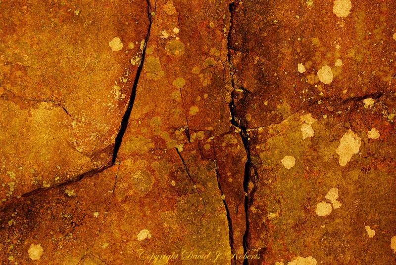 Cracked rock with lichen near Squires Lake, Washington