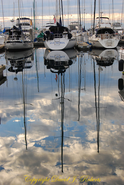 Sailboat reflections at Elliot Bay Marina, Seattle WA