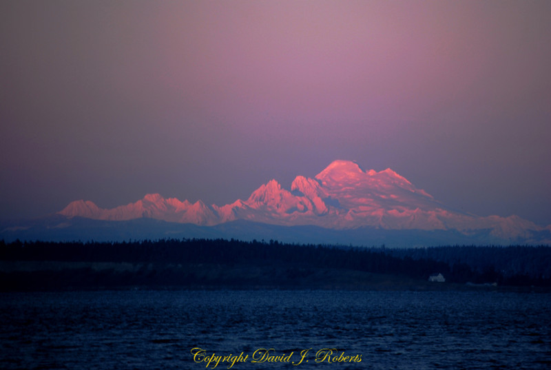 A pink Mount Baker hangs in the eastern sky in winter as seen from Point Hudson, Port Townsend Washington.