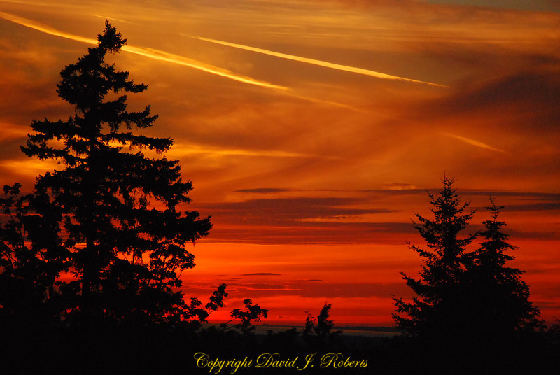 Gorgeous orange sunset from the Samish Highlands neighborhood in Bellingham, WA