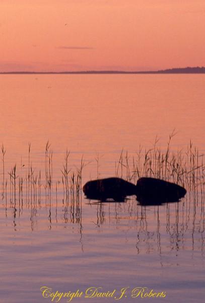 Swedish lake in sunset