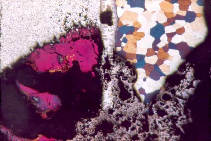 Microscopic images from Earl Roberts