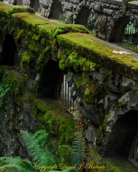 Old bridge on trail in Whatcom Falls Park, Bellingham Washington