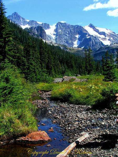 Trail to Lake Ann, near Mount Baker, North Cascades, Washington