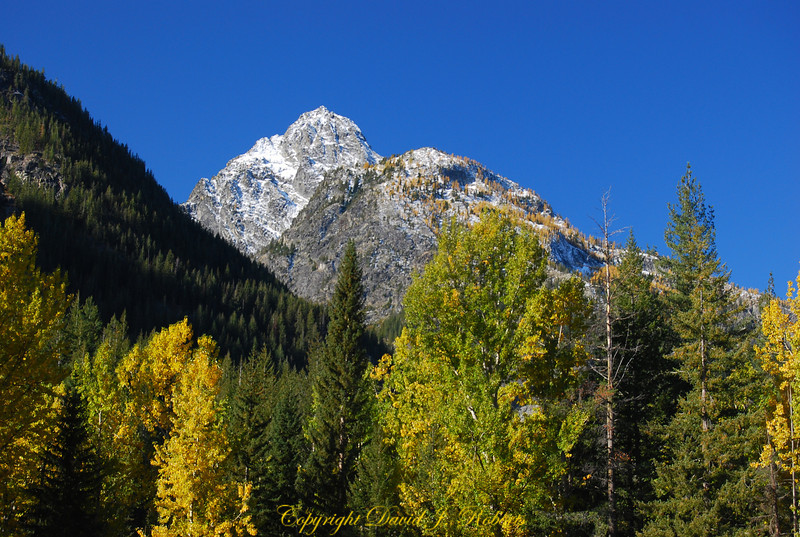 Dumbell Mountain and fall colors near Holden Village, WA
