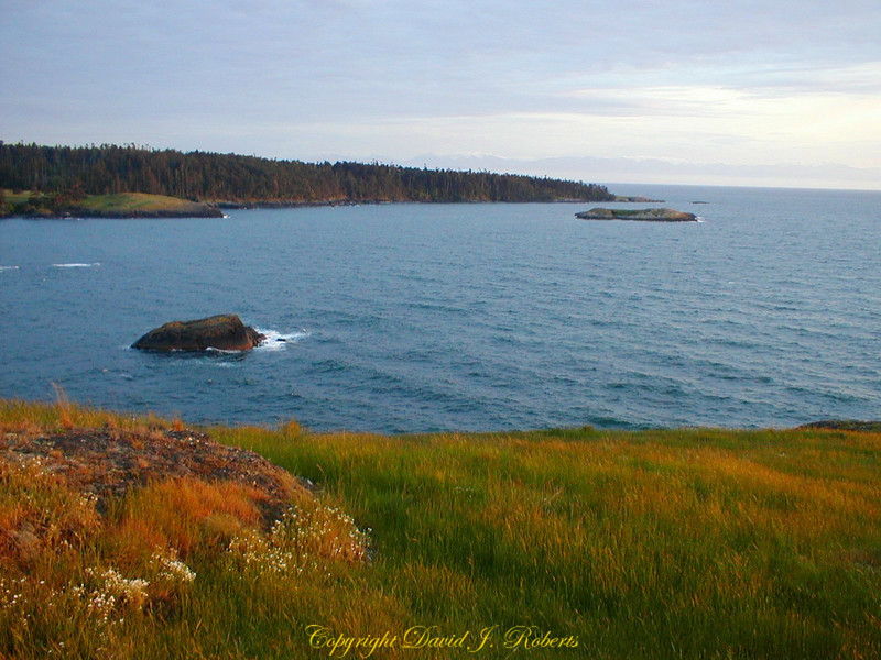 South end of Lopez Island in the San Juan Islands of Washington has a windswept beauty.
