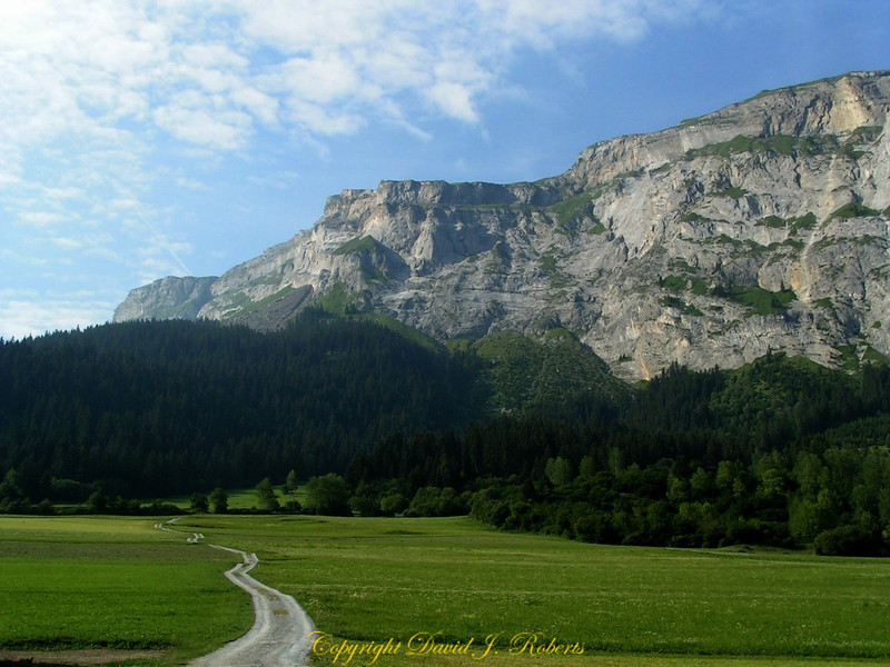Mountain and baeutiful field near Flim, Switzerland