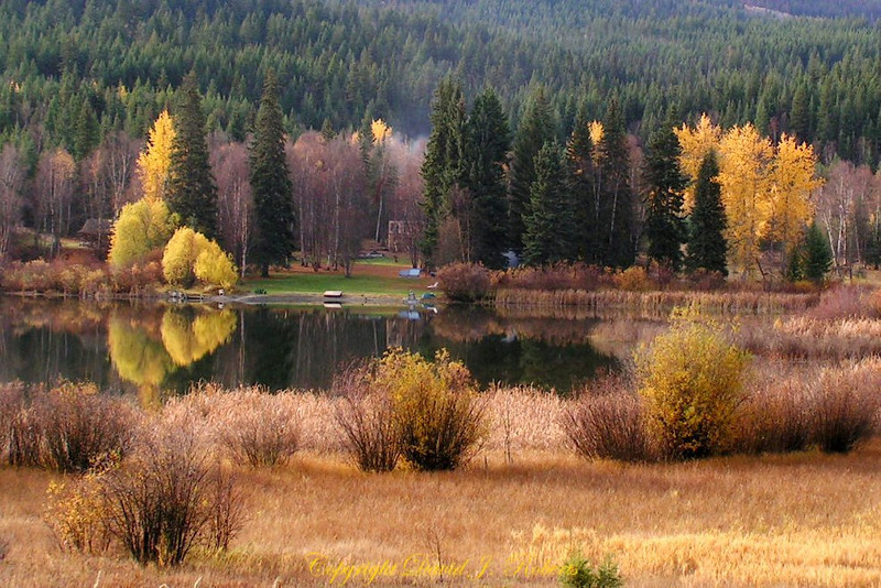 Autumn lake scene Little Heffley Lake near Kamloops BC