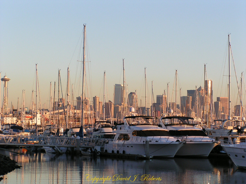 Elliott Bay Marina with the Seattle skyline in the distance