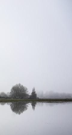 port meadow mist