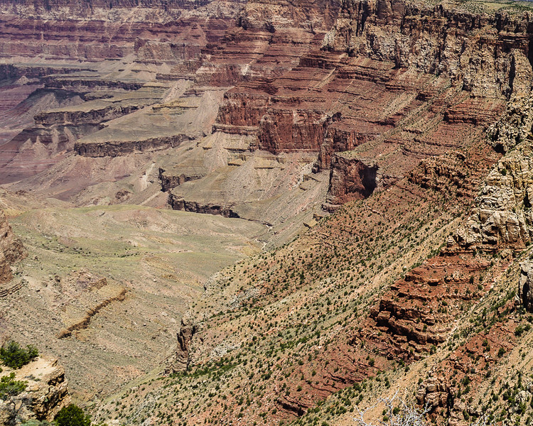 Patterns in the Canyon