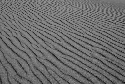 Ripples in the sand - Great Sand Dunes National Park, Colorado