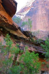 Small waterfall over a canyon wall - Zion National Park, Utah