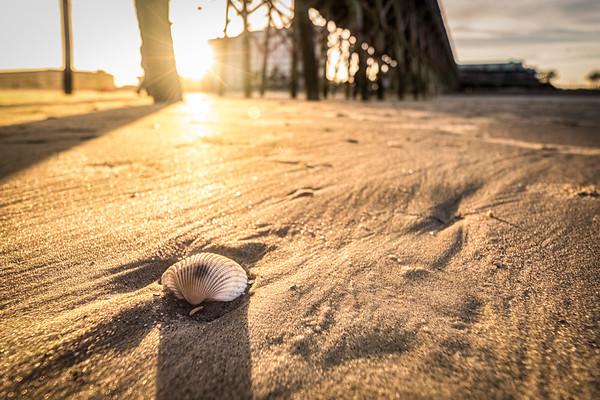 South Carolina: Coastal Scenes, Beaches, and Architecture