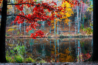 Tranquil Autumn Lake