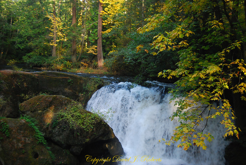 Whatcom Creek upper falls, Bellingham WA