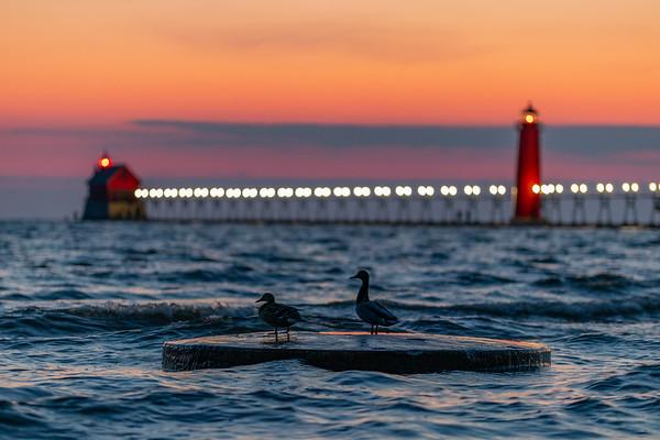 Ducks Watch Grand Haven Sunset