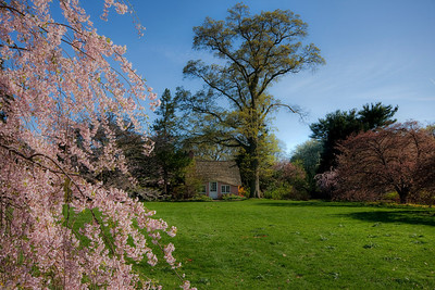 Pink House in spring at Planting Fields