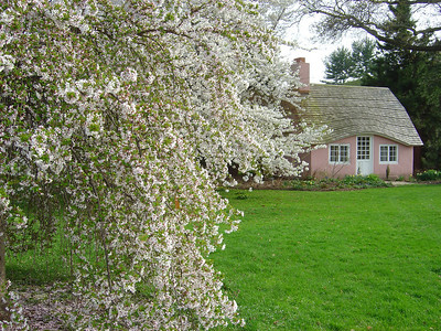 Pink cottage at Planting Fields Arboretum