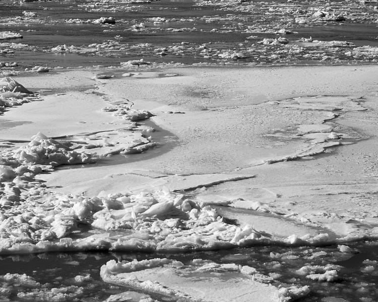 Hudson River ice_DSF8239