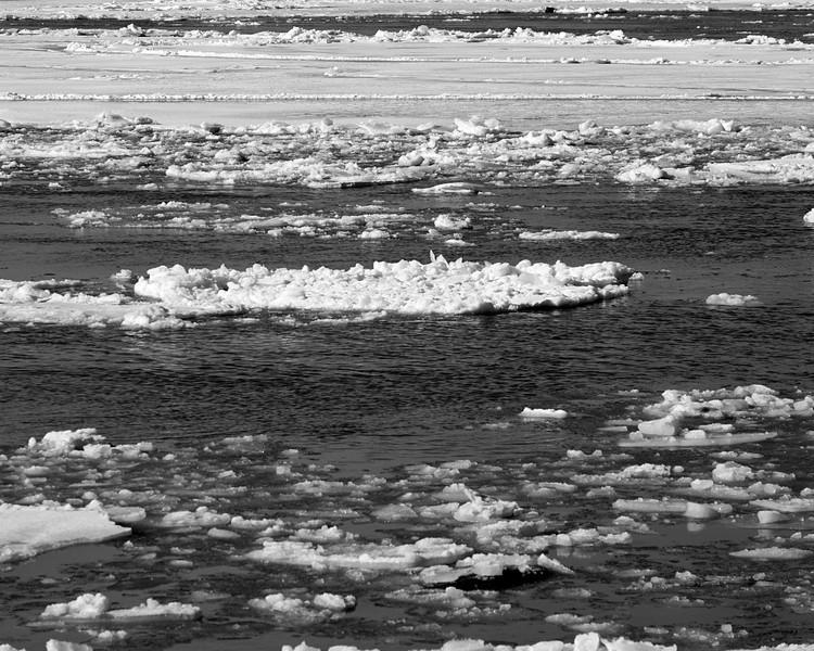 Hudson River ice_DSF8233