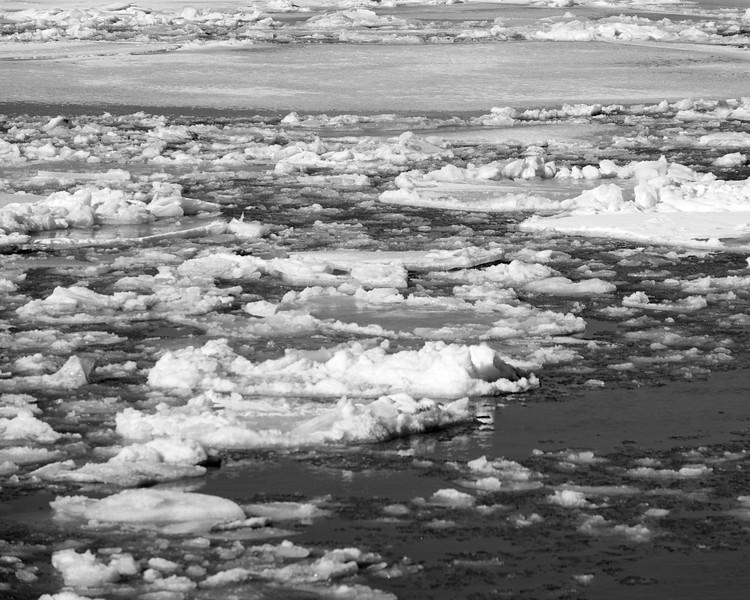 Hudson River ice_DSF8225