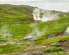 Mount Hengill area -  thermal springs