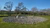 Glen Temple Wood Stone Circles at Kilmartin - 23 April 2015