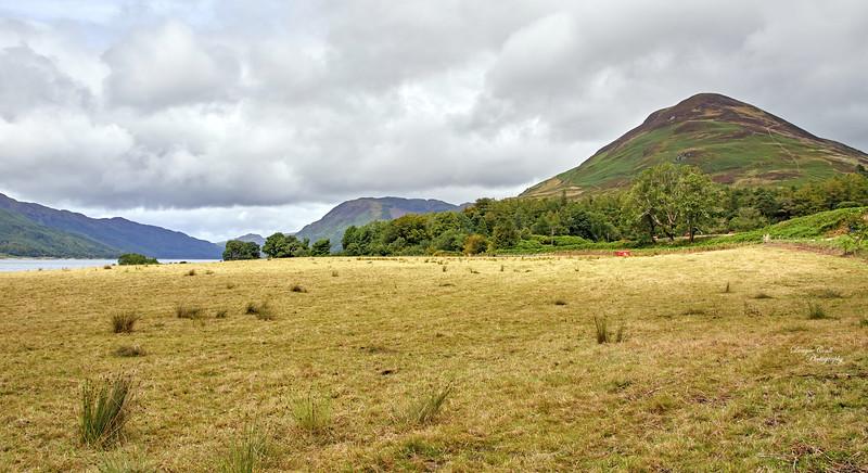 Scenery at Loch Striven - 25 July 2020