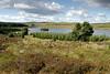 Gryffe Reservoir, Greenock