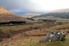 Scottish Scenery - Near Tyndrum - 22 April 2012