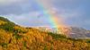 Autumn Rainbow in the Trossachs - 29 October 2013