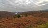 Trossachs View - 30 January 2014