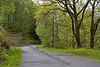 Road Around Loch Katrine