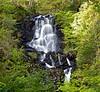Achray Forest Waterfall - David Marshall Lodge - 7 October 2012