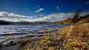 Loch Ard in the Trossachs - 29 October 2013