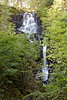 Achray Forest Waterfall - 7 October 2012