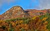 Trossachs in Autumn - 29 October 2013