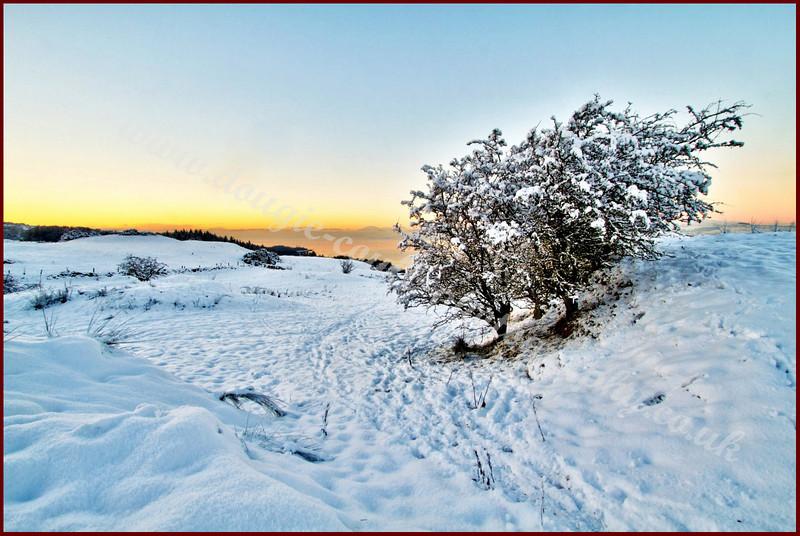 Langbank in Winter