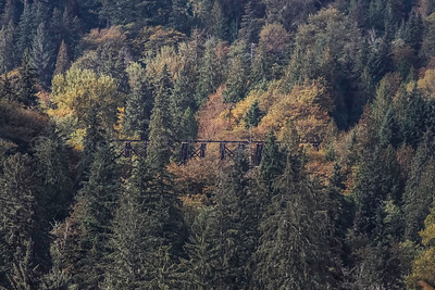 Fall Colors with the Snoqualmie Falls Abandoned Trestle