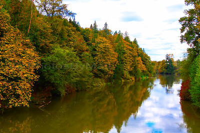 Fall Colors on the Snoqualmie River.  Monroe, WA