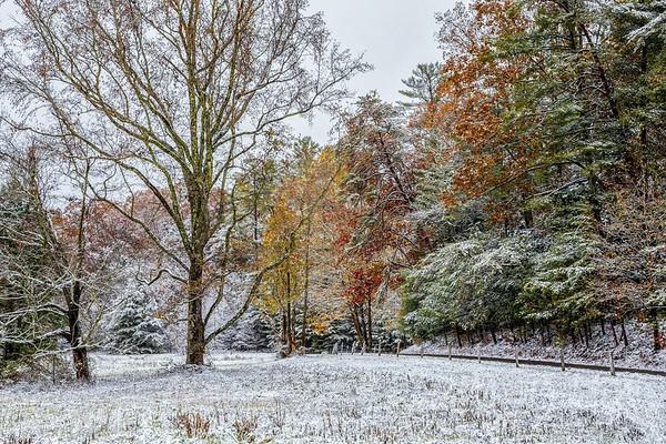 Autumn Snow On The Loop