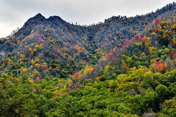 Autumn At Chimney Tops