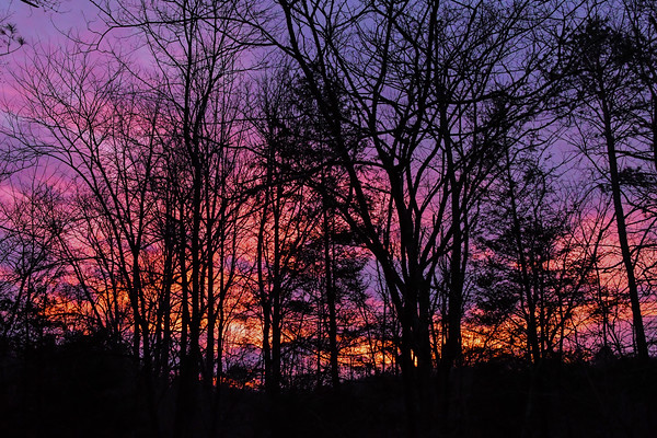 Polar Vortex Sunset