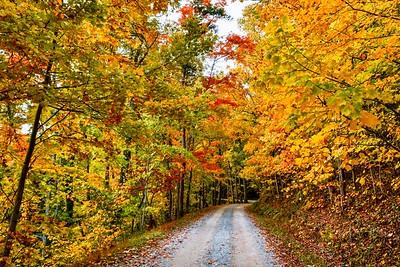 Rich Mountain Fall Drive