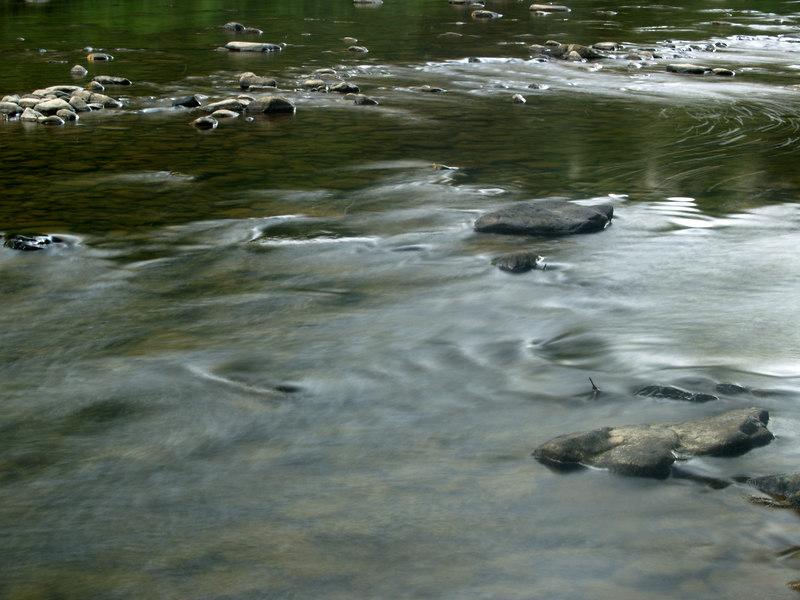 Flow<br /> <br /> August 5, 2006<br /> <br /> Rockwood, PA