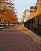 Autumn in Baltimore<br /> <br /> November 14, 2011<br /> <br /> Baltimore, MD
